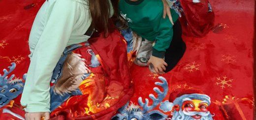 lenjerie de pat de Crăciun