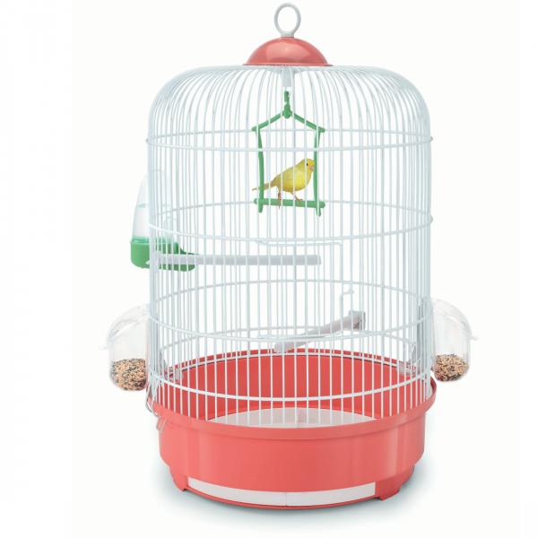 De unde cumpărăm colivii